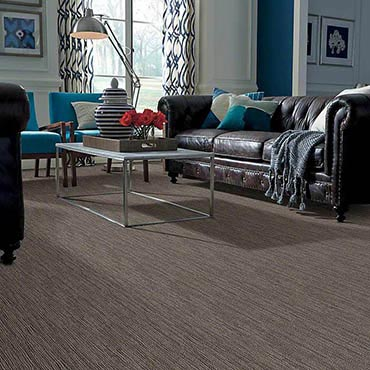 Anso® Nylon Carpet in Davenport, IA