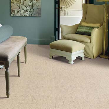 Caress Carpet by Shaw | Davenport, IA